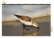Beach Bird Carry-all Pouch