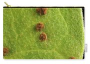 Bean Leaf With Rust Pustules Carry-all Pouch