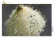 Beargrass Squaw Grass  1 Carry-all Pouch