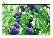 Beautiful Blue Plums On The Tree Carry-all Pouch