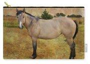Beautiful Buckskin Carry-all Pouch