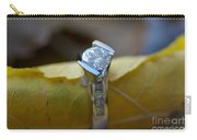 Beautiful Engagement One Carry-all Pouch