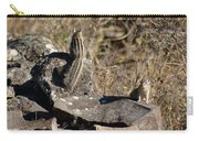 Beautiful Munks Carry-all Pouch
