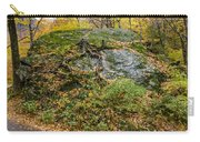 Beautiful Vermont Scenery 14 Carry-all Pouch