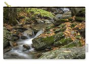 Beautiful Vermont Scenery 18 Carry-all Pouch