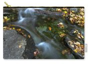 Beautiful Vermont Scenery 30  Carry-all Pouch