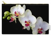 Beautiful White Orchids Carry-all Pouch