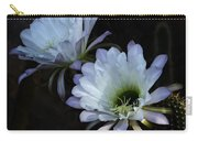 Beauty In The Desert  Carry-all Pouch