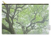Beech At Craggy Carry-all Pouch