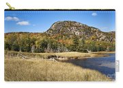 Beehive Mt Acadia Carry-all Pouch