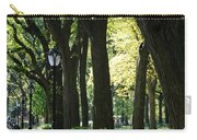 Benches Trees And Lamps Carry-all Pouch