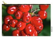 Berry Brilliant Carry-all Pouch