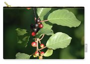 Berry Stages Carry-all Pouch