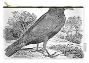 Bewick: Raven Carry-all Pouch