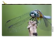Big Eyes Blue Dragonfly Carry-all Pouch