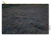 Big-headed Clover Sunset Carry-all Pouch
