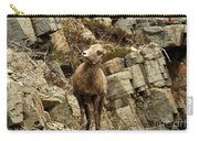 Big Horn On The Rocks Carry-all Pouch