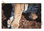 Big Paws Carry-all Pouch