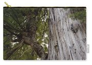 Big Tree In Prairie Creek Redwoods State Park Carry-all Pouch