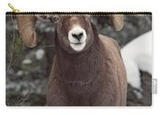 Bighorn Sheep, Maligne Canyon, Jasper Carry-all Pouch