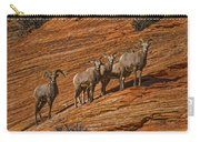 Bighorn Sheep, Zion National Park, Utah Carry-all Pouch