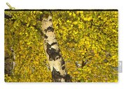Birch Forest In Finland Carry-all Pouch