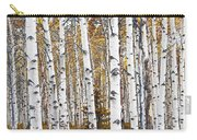 Birch Trees No.0644 Carry-all Pouch
