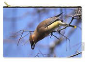 Bird - Cedar Waxwing - One At A Time Carry-all Pouch