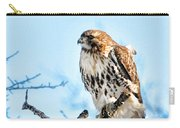 Bird - Red Tail Hawk - Endangered Animal Carry-all Pouch