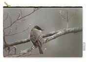 Bird - Eastern Phoebe - Very Contented Carry-all Pouch