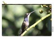 Bird - Hummingbird - The Observer Carry-all Pouch