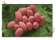 Bird Red Blood Cells Carry-all Pouch