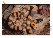 Bismarck Ringed Python Liasis Boa Carry-all Pouch