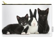 Black And Tuxedo Kittens With Dutch Carry-all Pouch