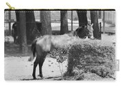 Black And White Hay Horse Carry-all Pouch