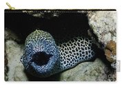 Black And White Honeycomb Moray Eel Carry-all Pouch
