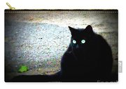 Black Cat Beauty Carry-all Pouch