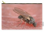 Black Fly Carry-all Pouch