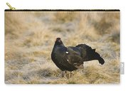 Black Grouse Displaying On A Lek Carry-all Pouch