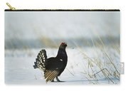 Black Grouse Tetrao Tetrix Carry-all Pouch by Konrad Wothe