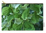 Black Locust Carry-all Pouch