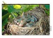 Blackbird Nest Carry-all Pouch
