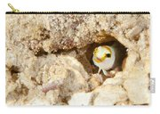 Blenny Carry-all Pouch