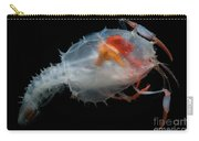 Blind Lobster Carry-all Pouch