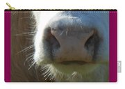 Blondie Up Close Carry-all Pouch