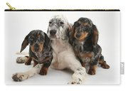 Blue Belton Setter And Dachshund Pups Carry-all Pouch