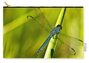 Blue Dragonfly 10 Carry-all Pouch