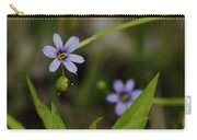 Blue Eyed Grass Carry-all Pouch