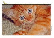 Blue-eyed Kitty Carry-all Pouch