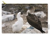 Blue-footed Booby Mother And Chick Carry-all Pouch